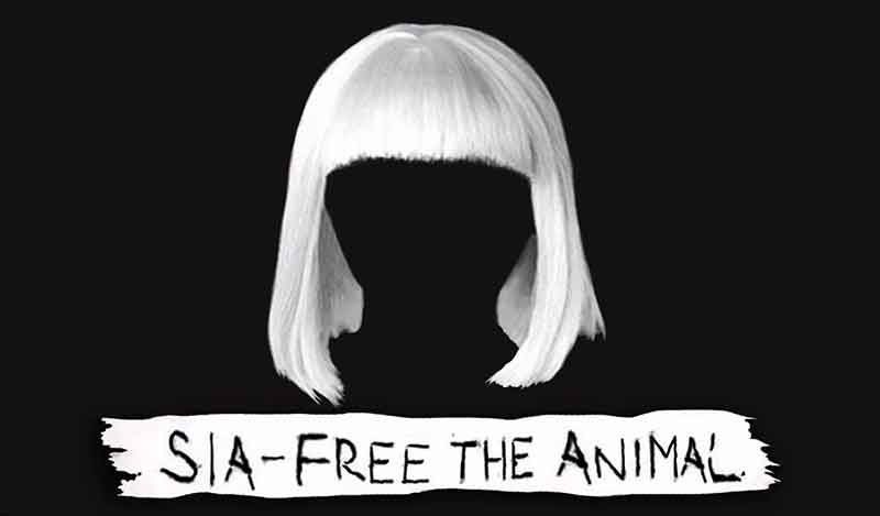 Free the Animal Song Lyrics, Sia, 1000 Forms Of Fear, Songstune.com